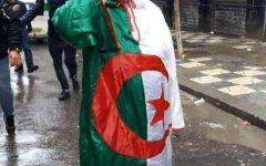 """Redouane Boudjemaa : """" C'est le système qui est en crise, pas l'Algérie""""."""