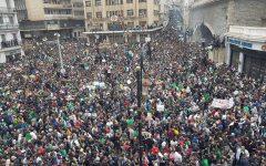 Avec la « hirakologie », l'Algérie fait son retour au cœur des sciences sociales